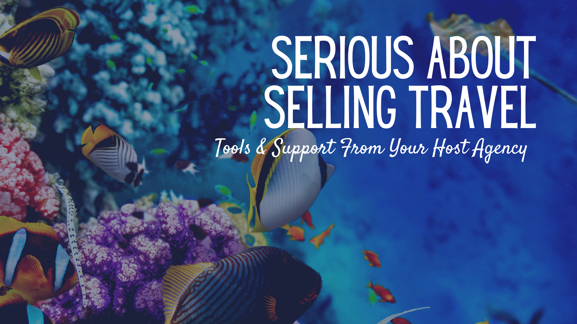 Serious About Selling Travel
